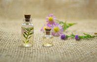 Dom pełen zmysłów - istota zapachu
